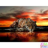 Diamond Painting Luipaard 40x50cm_