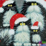 Diamond Painting Crazy Cats Kerst 30x30cm_