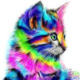 OP=OP Diamond Painting Gekleurde Kat 40x40cm_
