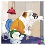 Diamond Painting Toilet Hond 30x30cm_