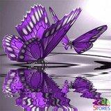 Diamond Painting Paarse Vlinders 30x30cm_