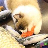 OP=OP Catnip Vis 08 20cm (2 stuks) Kattenspeelgoed met kattenkruid_