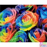 Schilderen op nummer Gekleurde Rozen 40x50cm_