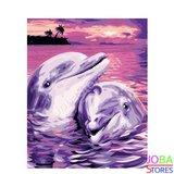Schilderen op nummer Dolfijnen 40x50cm_
