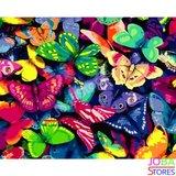 Schilderen op nummer Gekleurde Vlinders 40x50cm_