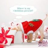 OP=OP Honden & Katten Kerst Pakje maat M_