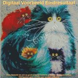 Diamond Painting Crazy Cats 01 30x30cm_