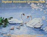 Diamond Painting Zwanen 50x40cm_