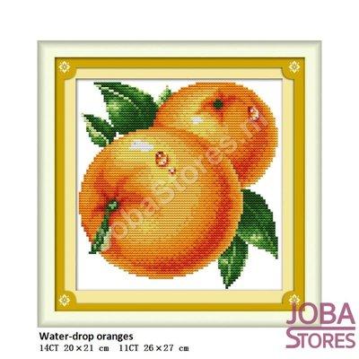 Borduur Pakket Fruit 01 11CT voorbedrukt (26x27cm)