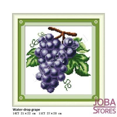 Borduur Pakket Fruit 03 11CT voorbedrukt (27x28cm)