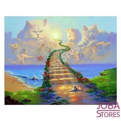 Diamond Painting Katten Hemel 60x80cm