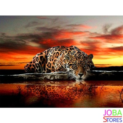 Diamond Painting Luipaard 40x50cm