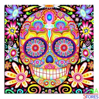 Diamond Painting Colorful Skull 30x30cm