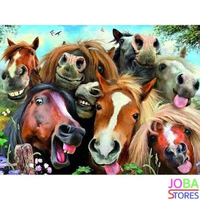 Diamond Painting Gekke Paarden 40x30cm