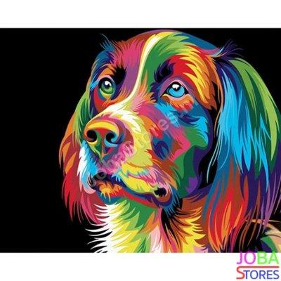 Schilderen op nummer Gekleurde Hond 40x50cm