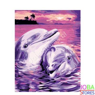 Schilderen op nummer Dolfijnen 40x50cm