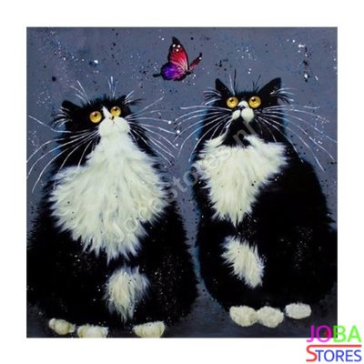 Diamond Painting Crazy Cats 10 30x30cm