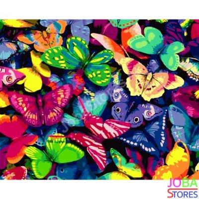Schilderen op nummer Gekleurde Vlinders 40x50cm