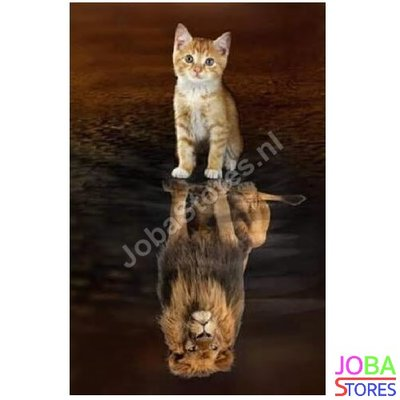 Diamond Painting Kitten-Leeuw 30x40cm