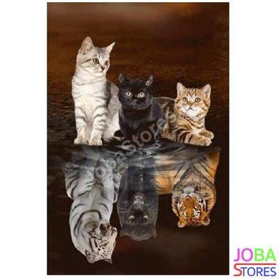 Diamond Painting Kittens-Big Cats 30x40cm