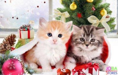 Diamond Painting Kerst Kittens 30x40 - rond